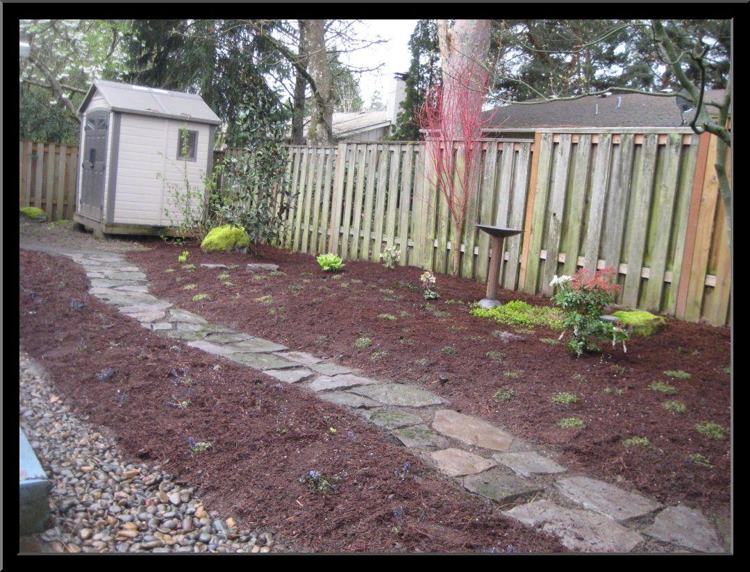 Dog Friendly Backyard Design Ideas For The Home Pinterest - Dog friendly backyard design ideas