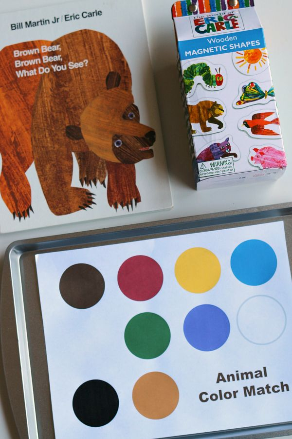 See the Bear, the Color, the Shape