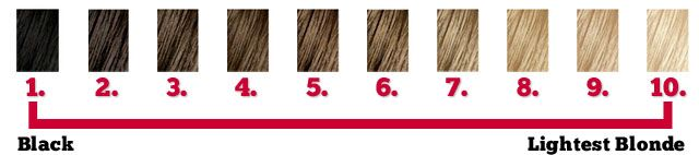 hair color level chart ranging