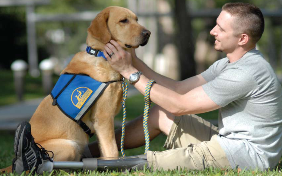 Dog Wish Psychiatric Service Dogs Transform Lives Of Patients With Disabilities Service Dogs Assistance Dog Therapy Dogs