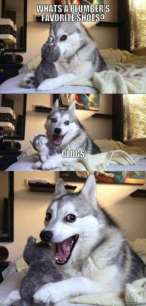 17 Pun Dog Puns That Will Instantly Brighten Your Day Funny Puns