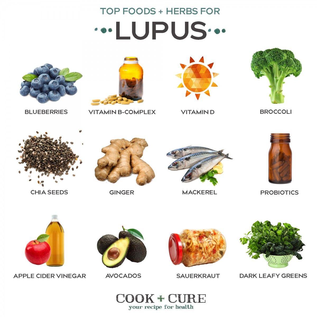 Top Foods Lupus Design 2 Healthy Gut Flora Lupus Diet Food For Digestion