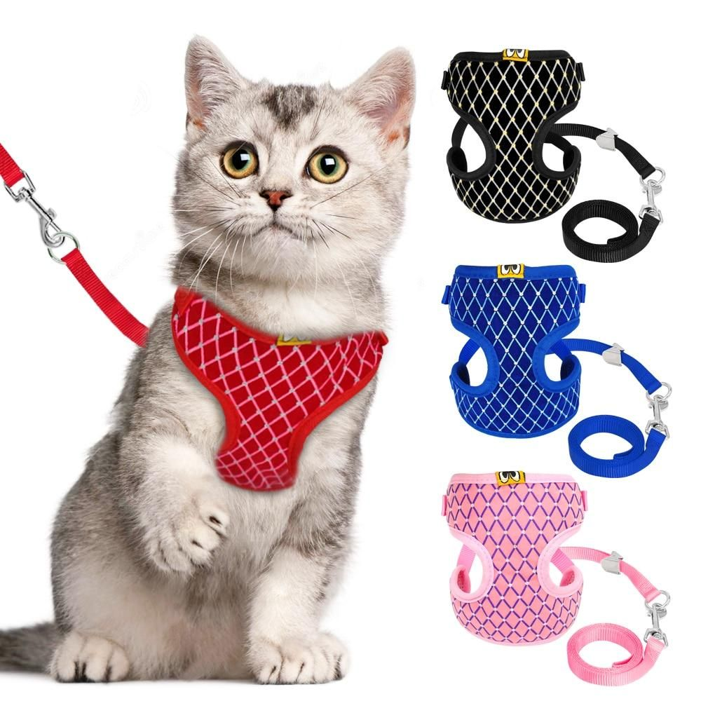 Breathable Pet Harness Dogs Cats In 2020 Cat Harness Cat Leash Cat Collars