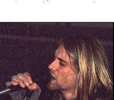 71989e822f443d7329c0ef46d5ee21e9--donald-cobain-kurt-cobain.jpg (236×208)