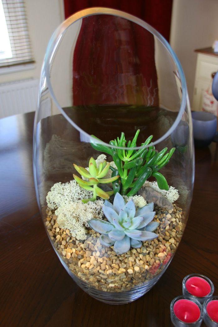 sukkulenten im glas im blickfang kreative deko ideen mit pflanzen dekoration decoration. Black Bedroom Furniture Sets. Home Design Ideas