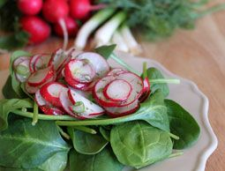 We couldn't get enough of this fresh and flavorful Radish Salad with Spring Herbs. Photo by Stephanie Staton