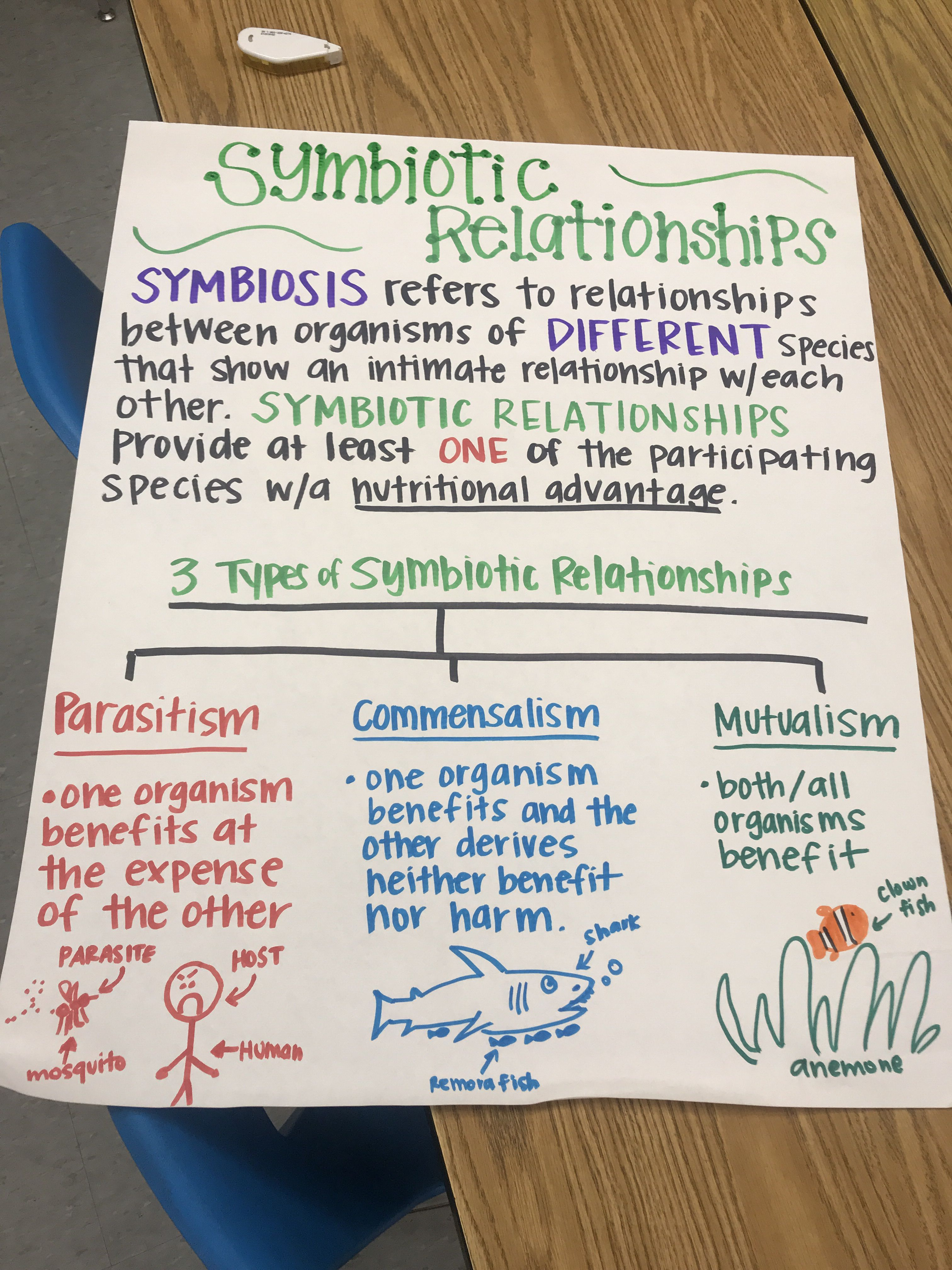 Symbiotic Relationships Anchor Chart Biology