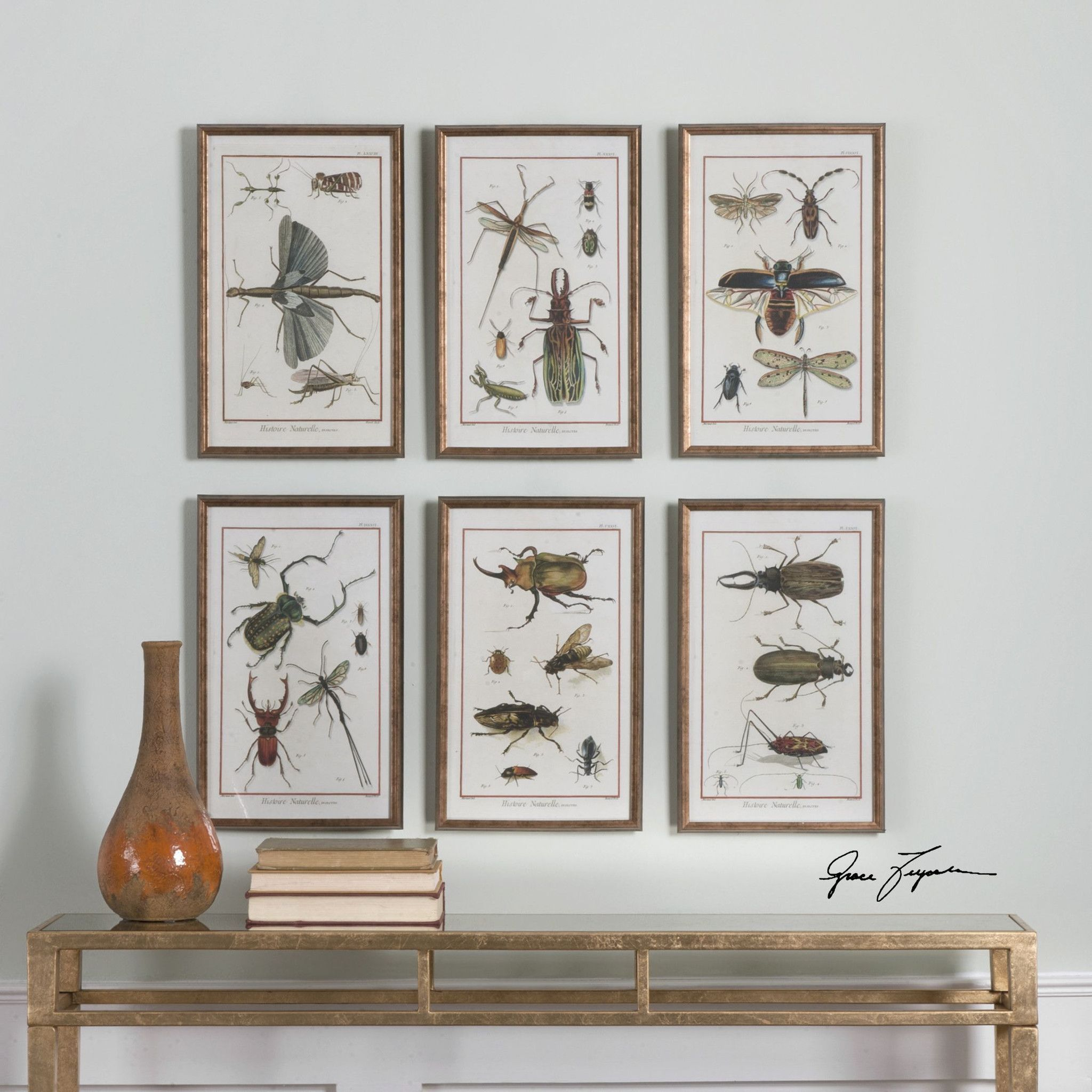 Uttermost multi insect prints s wall art pinterest walls