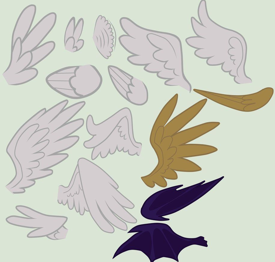 Pegasus Wings Template My Little Pony Drawing Plush