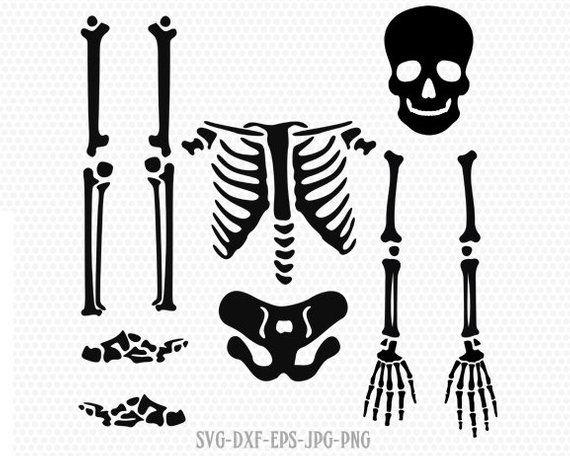 Skeleton parts kit SVG, halloween skeleton svg, skeleton