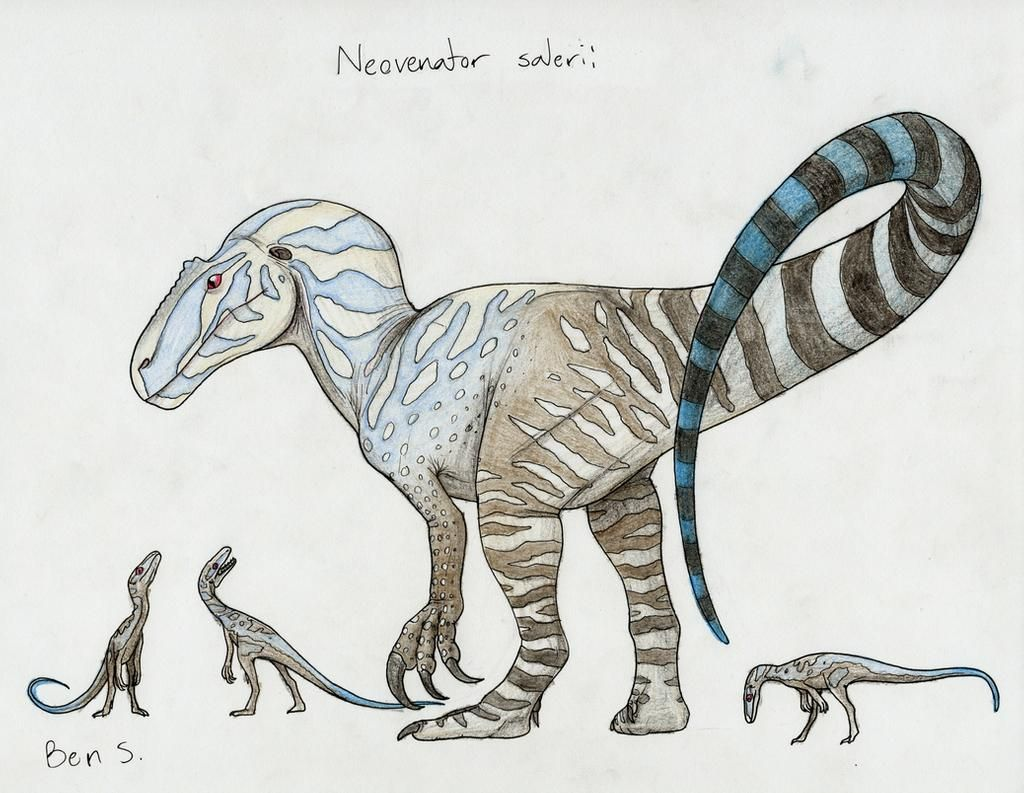 Pterosaur-Freak User Profile | DeviantArt