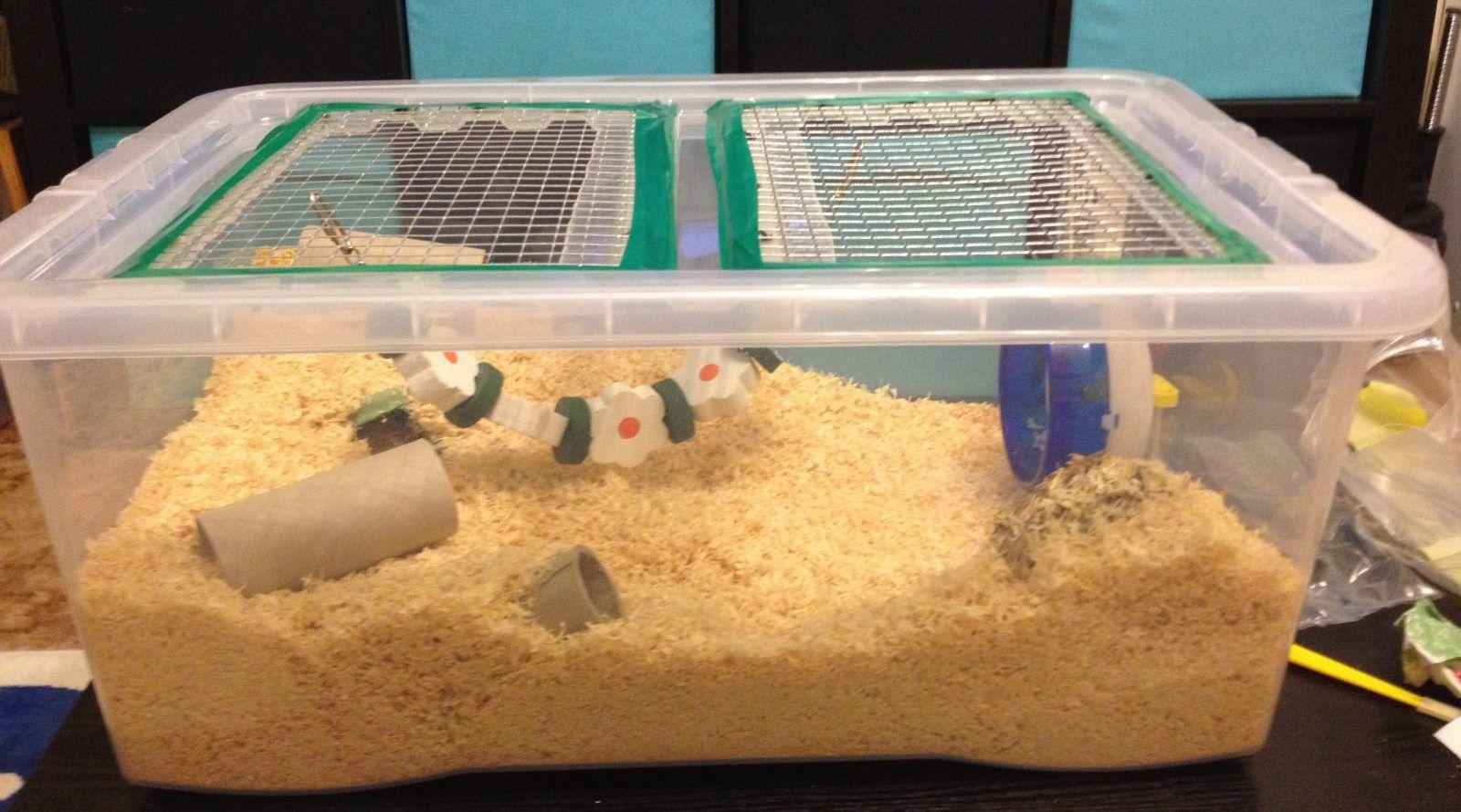 Make A Hamster Cage Thehamsterhut Hamster Cage Hamster Diy Cage Hamster Bin Cage