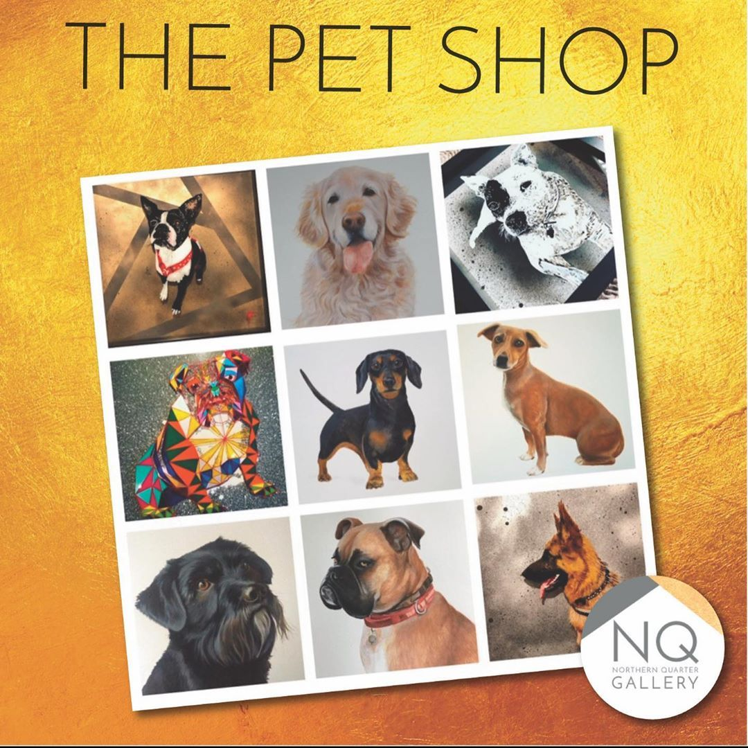 Step Into George The Dog Boutique Of Our Dreams Dog Boutique Ideas Dog Boutique Pet Store Ideas