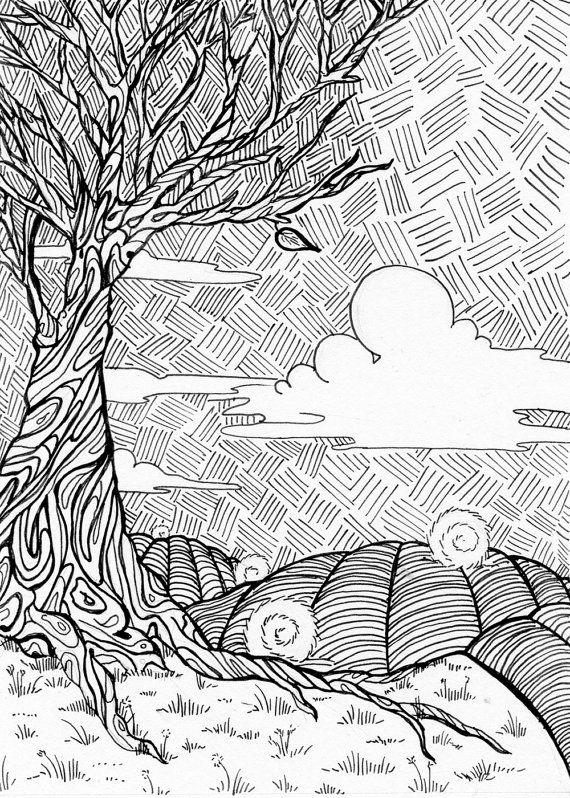 Inspired By The Rolling Hay Fields Adult Colouring