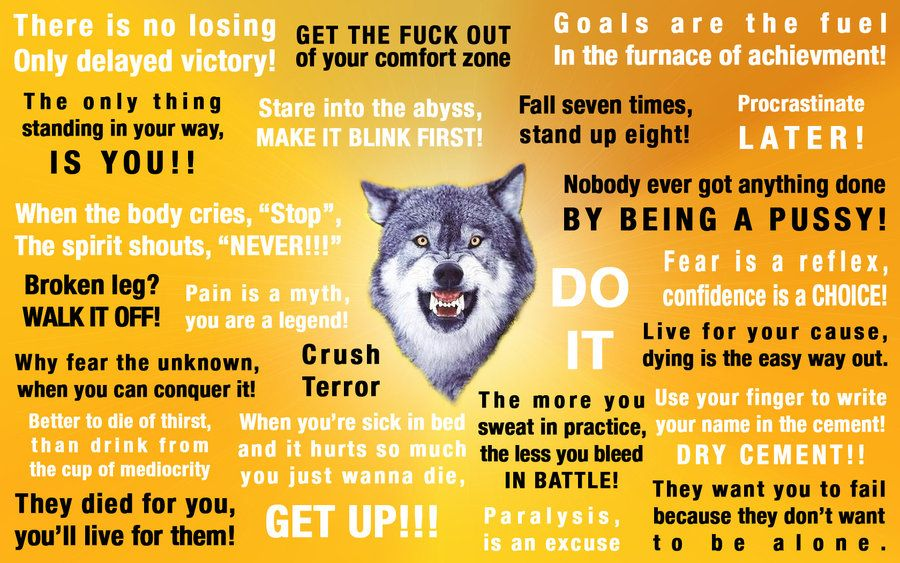Uberman Of The North And Courage Wolf Are One Quotes For Inner