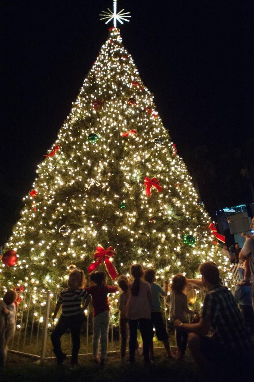 Photo gallery Bayfront Park Christmas tree lighting