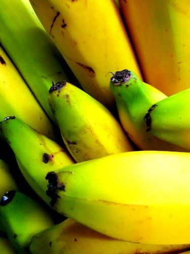 use a ripe banana peal to whiten your teeth fast! rub inside of, Hause ideen