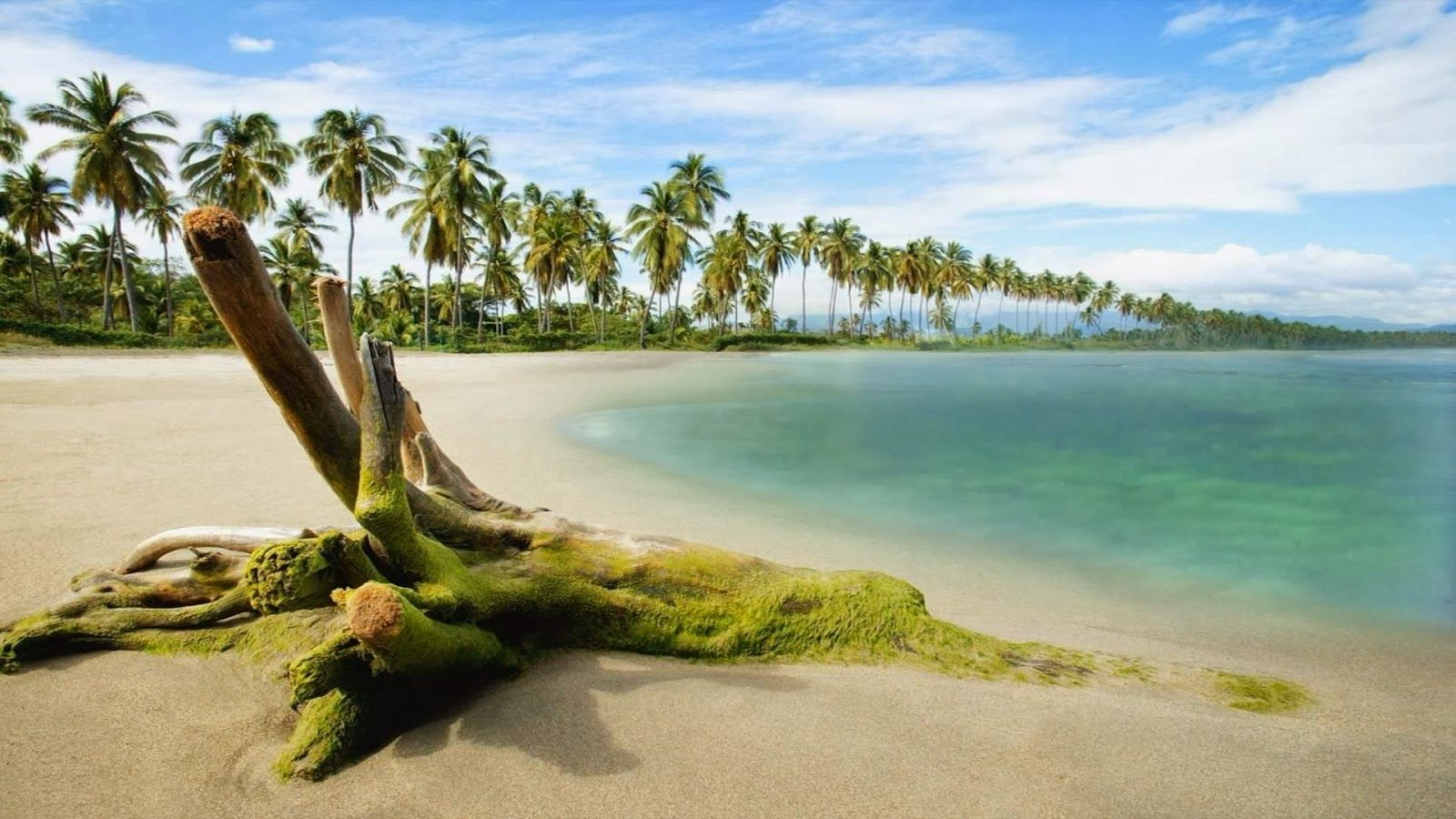 Beach Nature HD Wallpapers 1080p Widescreen Hd nature