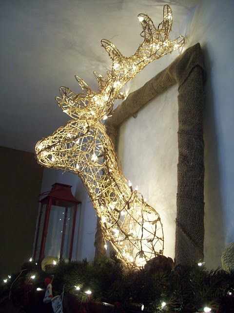 Mounted deer in lights