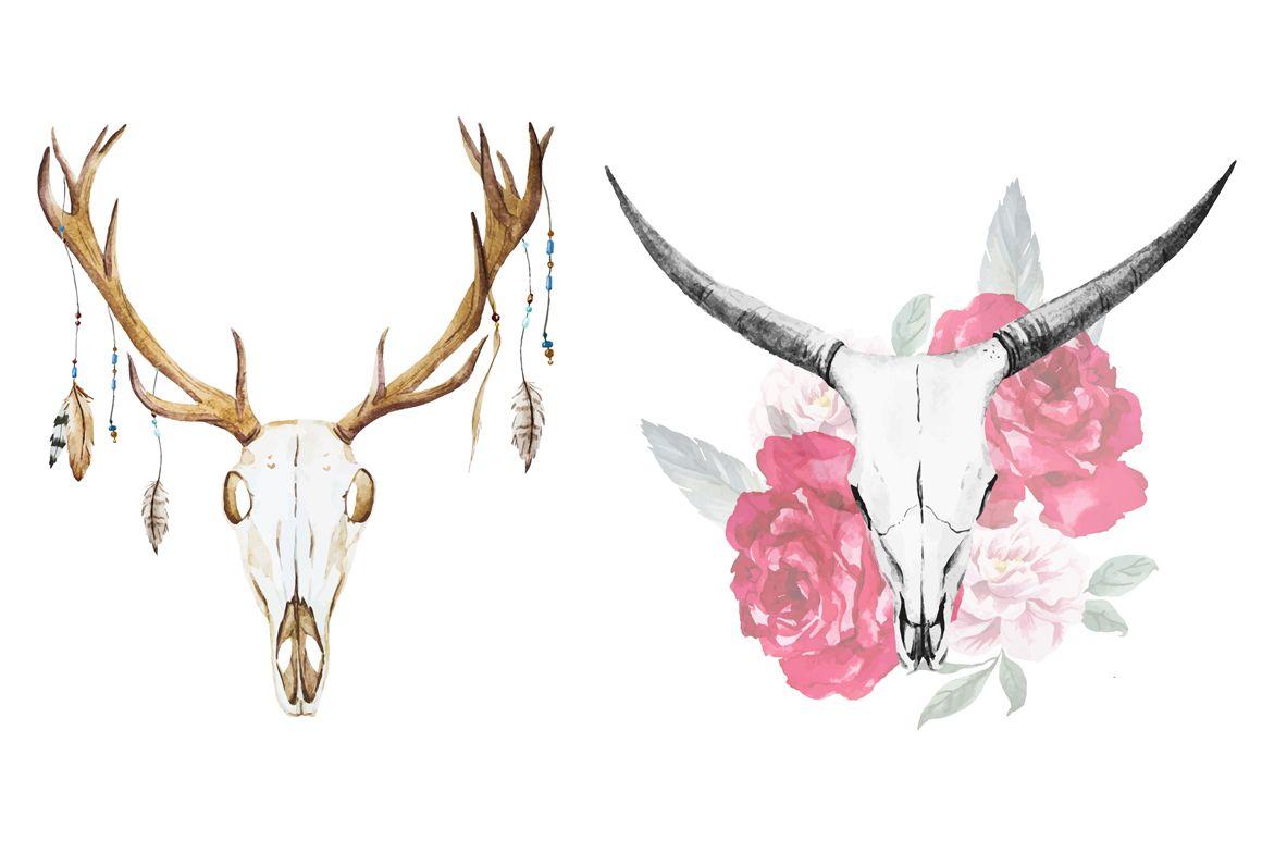 Buck Clip Art European Mount Deer Skull Clip Art Deer Track Clip Png 1306 1600 Deer Drawing Deer Skull Drawing Deer Skulls