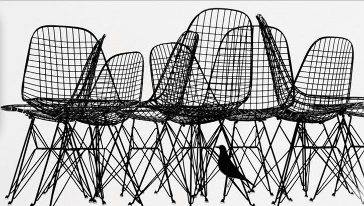 Eames chairs & house bird