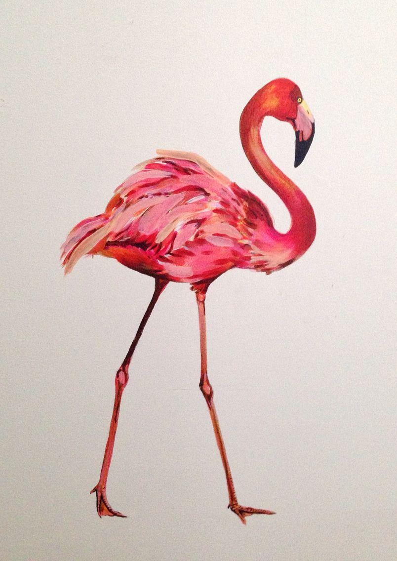 #Muur #WindyCorteelMurals #acrylverf #flamingo #TweeUurWerk #glaciestechniek #muurschildering #badkamer #interieur #vogel #schilderij #design #dier #illustratie