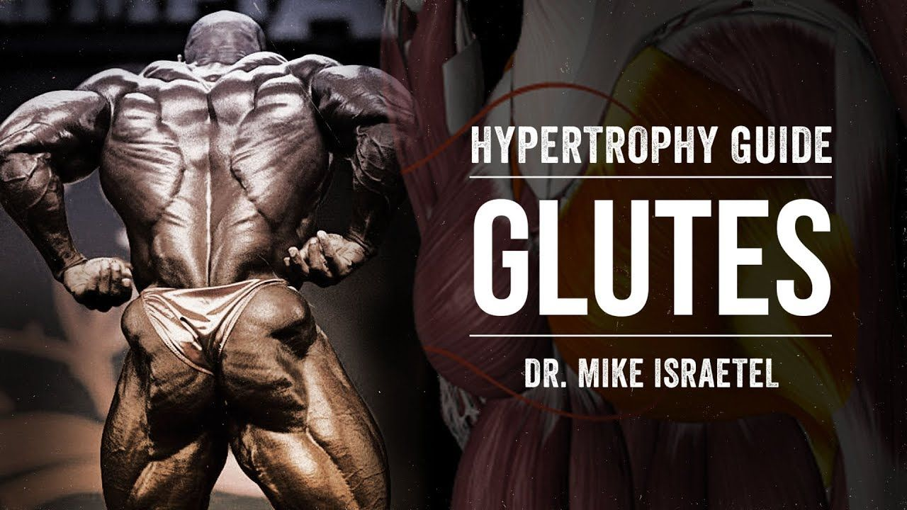 Hypertrophy Guide | Glutes | JTSstrength.com