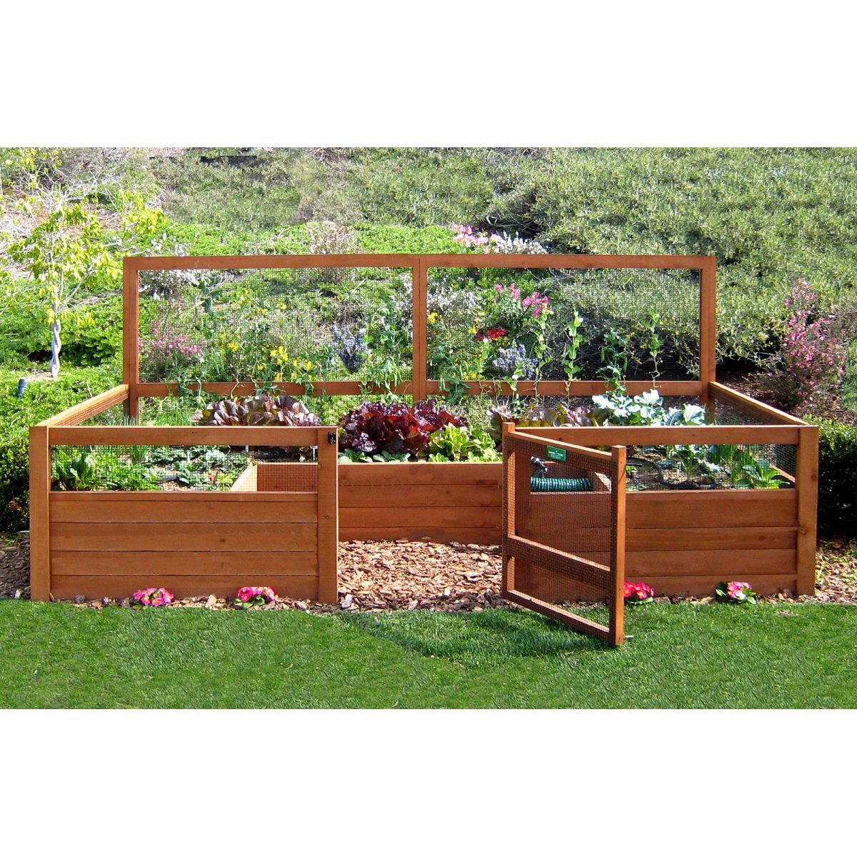 Hey Liz Check This Out Enclosed Contained 6 X 12 Ft Vegetable Garden Fenced Vegetable Garden Small Vegetable Gardens Vegetable Garden Design