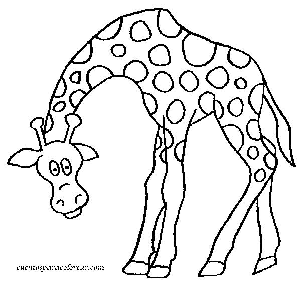 dibujos-de-jirafas-2.png (610×573) | tarea | Pinterest | Tareas