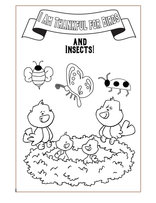 Sunbeam lesson 13 i am thankful for birds and insects coloring page