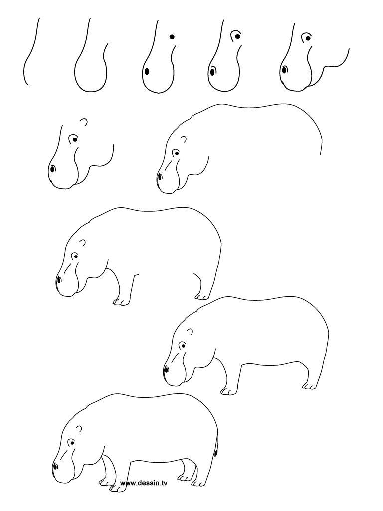 dessin hippopotame | zoé | Pinterest | Apuntes y Dibujo