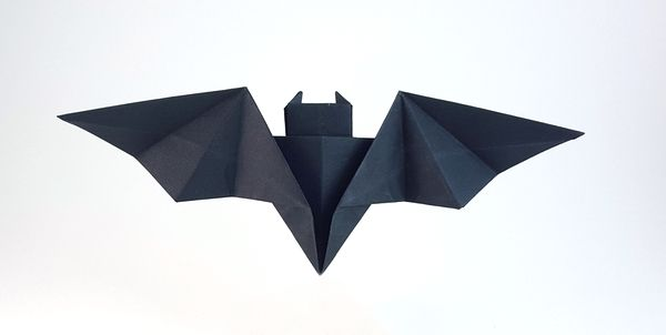 Origami Batarang By John Montroll Folded Gilad Aharoni