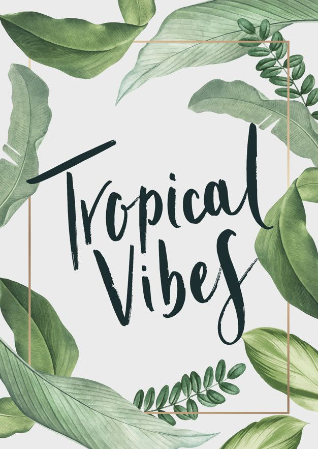 Download Tropical Vibes Poster For Free Tropical Leaves Tropical Quotes How To Draw Hands Watercolor illustration of exotics colorful leaves and branch with cute quote. pinterest