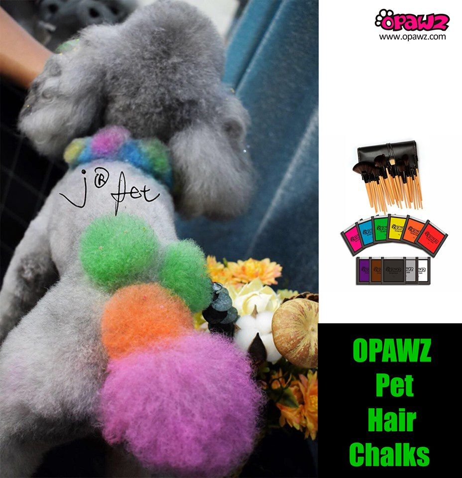 This Sweet design was done by J pet grooming with OPAWZ ...