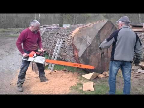 Sharpen a chainsaw chain tool tip 10 making sawdust how to hand sharpen a chainsaw chain tool tip 10 making sawdust how to hand sharpen keyboard keysfo Image collections