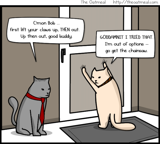 The Bobcats By The Oatmeal Who Doesnt Love A Cat In A Screen