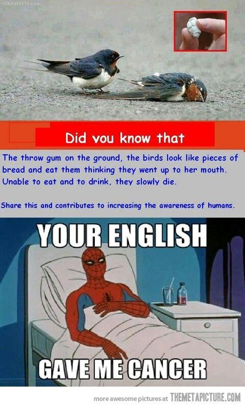 84fc701989c54b9a156b984ffe40abf9 cancer causing english spiderman memes pinterest spiderman,Spiderman Cancer Meme Generator