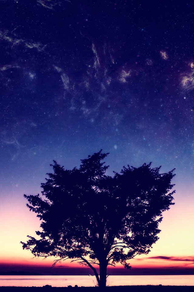 Sunset #iPhone 4s #Wallpaper   iPhone 4(s) Wallpapers ...