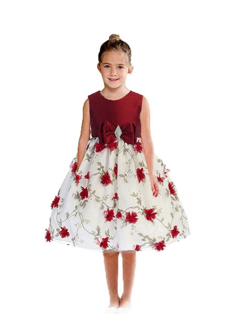 dae58ae2b61d4 Posh Red/White Floral Embroidered Flower Girl Holiday Dress, Crayon ...