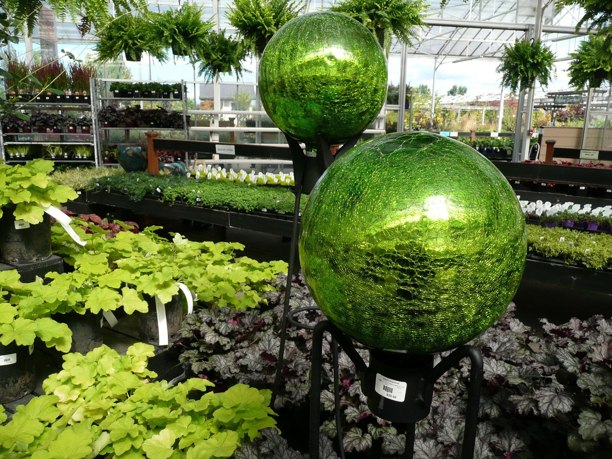Watson S Greenhouse And Nursery Always Has The Selection