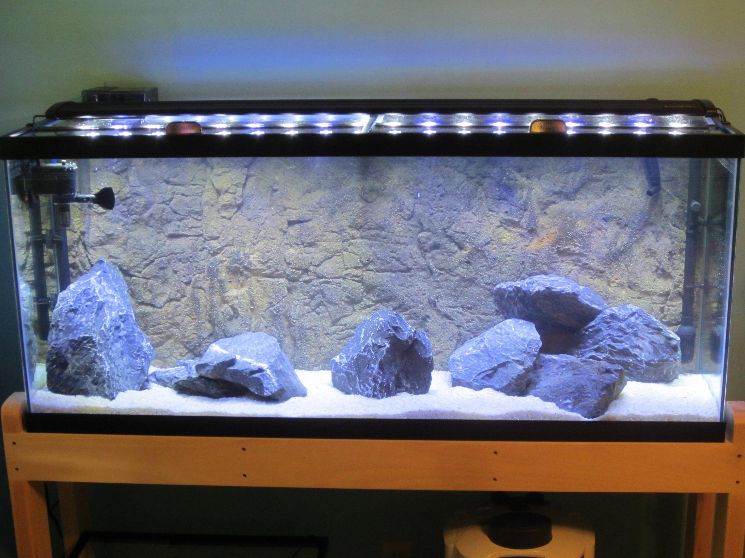 customer piucture Aquarium tank Set ups Pinterest