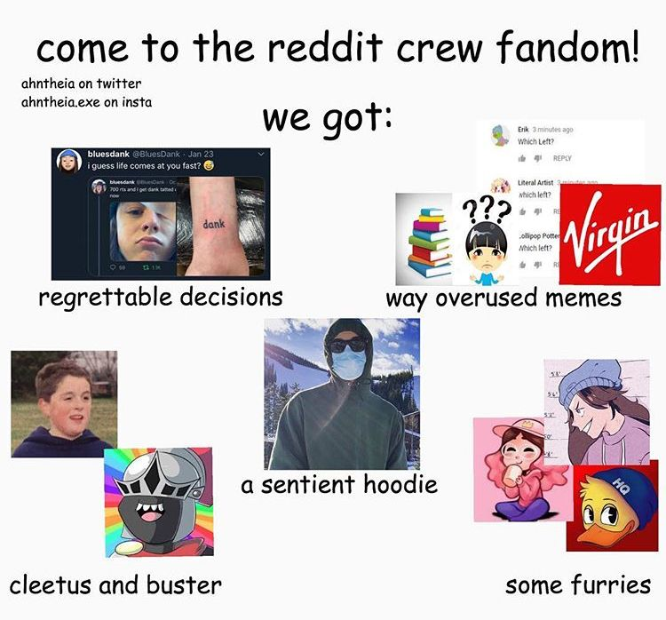 Pin By Ava On Reddit Crew Youtube Memes Youtubers Funny Gif