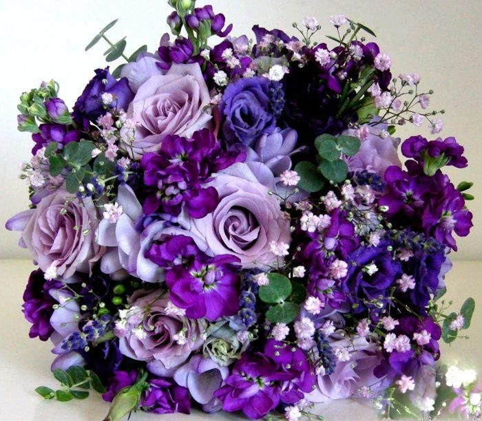 Dark Blue Flowers For Wedding Bouquets: Love The Combo Of Baby's Breath And