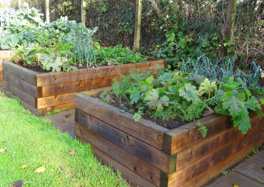 Backyard Raised Bed Garden Ideas This is a tall wooden raised garden bed. These beds are great lined up next to one another. Since they are not very long, you can get many of them next to each other to increase the garden space.This is a tall wooden raised garden bed. These beds are great lined up next to one another. Since they are not very long, you can get many of them ne...