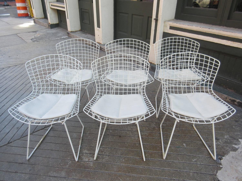 Knoll Sedie ~ Sedia bertoia side chair di harry bertoia per knoll fede lapo
