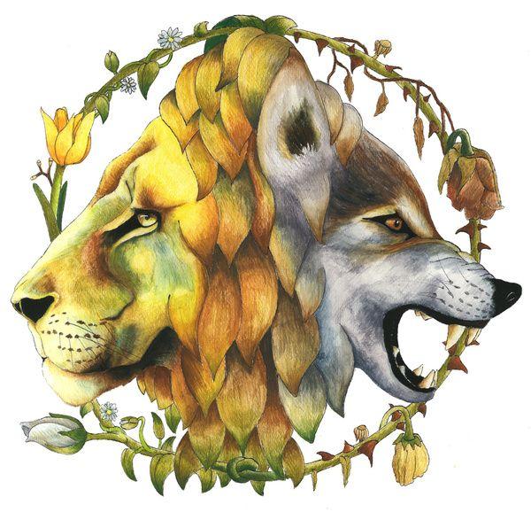 Lion vs Wolf Ar...