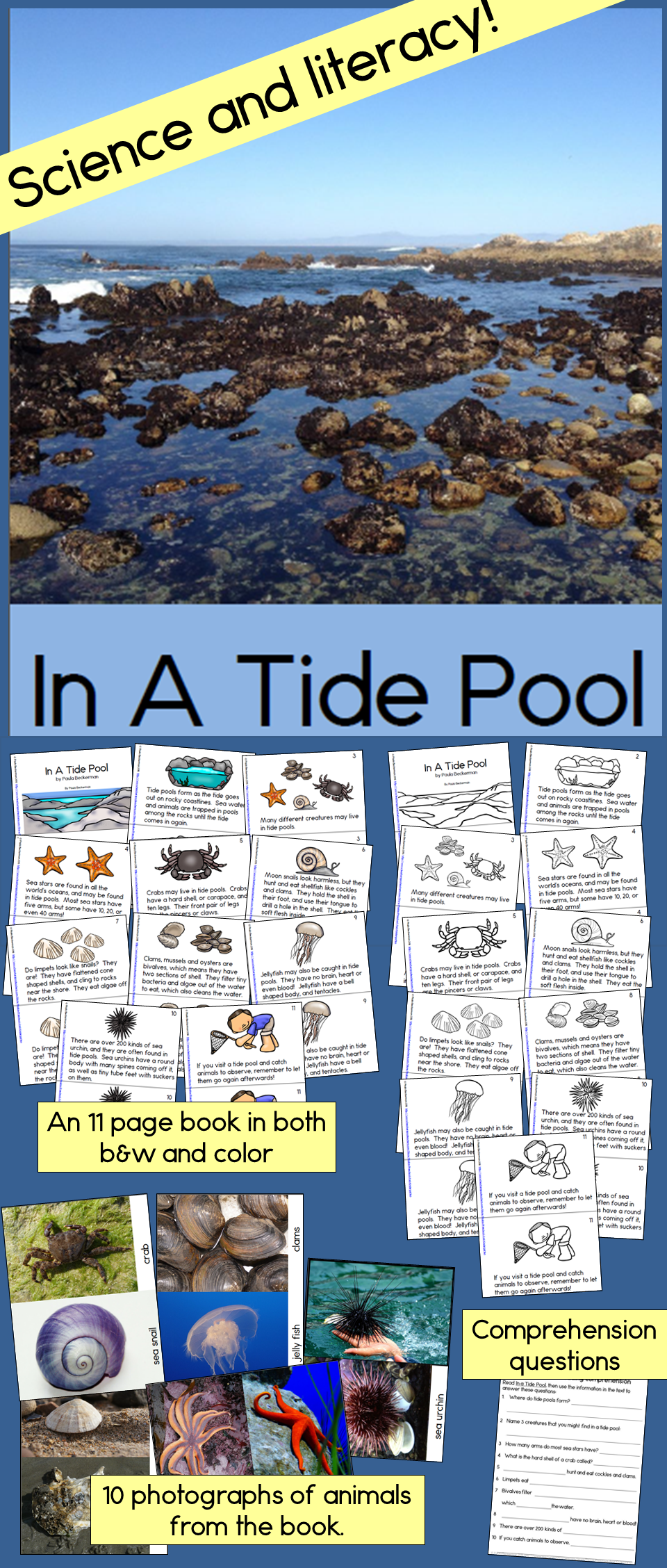 in a tide pool non fiction guided reading book tide pools