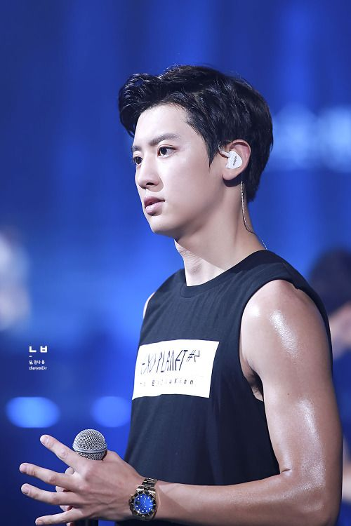 Chanyeol - 151017 Exoplanet #2 - The EXO'luXion in Guangzhou Credit: 널 만나, 봄.