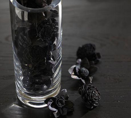 Dried Black Sola Flower Vase Filler Things I Love Pinterest