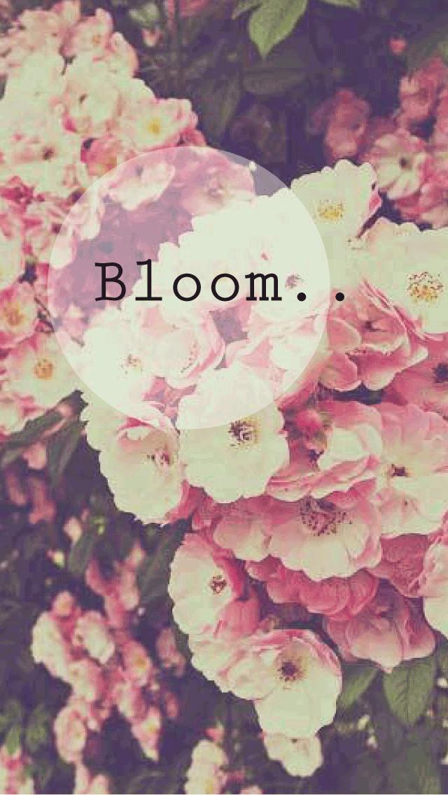 Bloom Phone Background Wallpaper Flower Spring Love Dream Smile Summer Vintage Gypsy Boho Hipster Indie